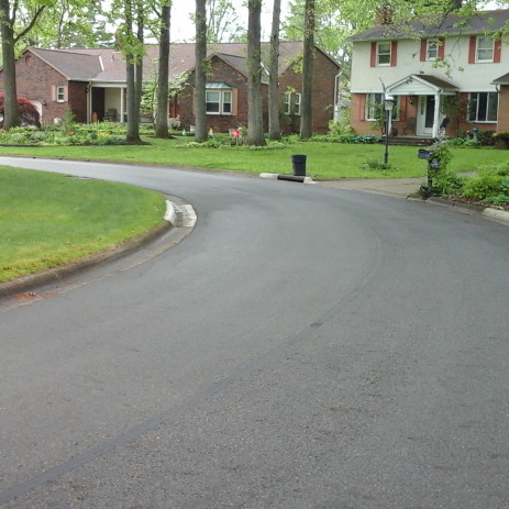 Village of Minerva Park Pavement Condition Assessment
